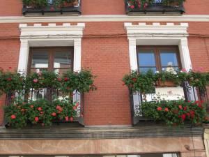 balcones en flor